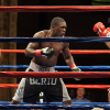 Berto am 24. November gegen IBF-Champion Bundrage?